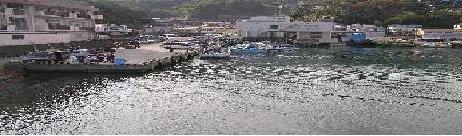 ダイビングでお世話になる、海大好きになった、伊豆川奈漁港